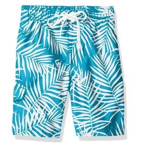 Toddler UPF 50+ Swim Trunks Quick Dry Fabric Blue